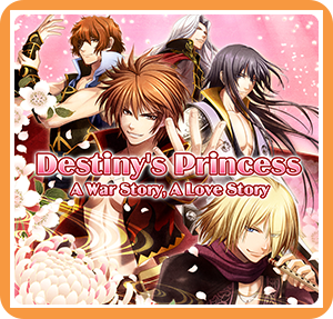 Boxart for Destiny's Princess: A War Story, A Love Story